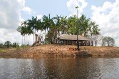 亚马逊雨林:沿亚马孙河岸环境美化在马瑙斯,巴西南美附近 免版税库存图片