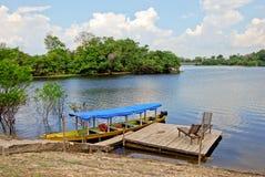 亚马逊雨林-在河的独木舟远征在马瑙斯,巴西南美附近 免版税库存图片