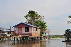 亚马逊amazonia典型房子的高跷 免版税图库摄影