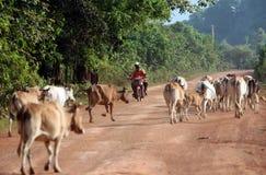 亚洲东南亚老挝KHAMMUAN区域 库存图片