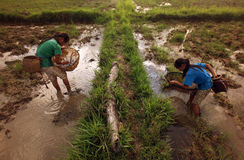 亚洲东南亚老挝KHAMMUAN区域 图库摄影