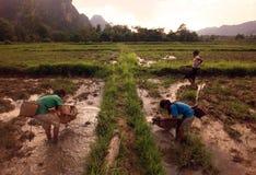 亚洲东南亚老挝KHAMMUAN区域 免版税图库摄影