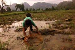 亚洲东南亚老挝KHAMMUAN区域 免版税库存图片