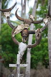 亚洲东帝汶东帝汶RACA坟园 库存图片