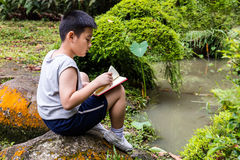 亚洲中国小男孩阅读书在公园 库存照片