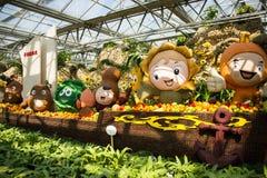 亚洲中国,北京,农业狂欢节,室内展览室,场面,动画片菜 免版税库存图片