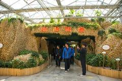 亚洲中国,北京,农业狂欢节,室内展览室,场面,姜山隧道 免版税库存照片