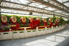 亚洲中国,北京,农业狂欢节,室内展览室,场面,美国红鱼,丁 库存图片