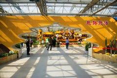亚洲中国,北京,农业狂欢节,室内展览室,场面,花塑造了门 免版税库存照片