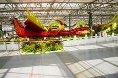亚洲中国,北京,农业狂欢节,室内展览室,场面,菲尼斯 免版税图库摄影