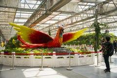 亚洲中国,北京,农业狂欢节,室内展览室,场面,菲尼斯 免版税库存照片