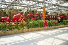 亚洲中国,北京,农业狂欢节,室内展览室,场面,蕃茄风景 图库摄影