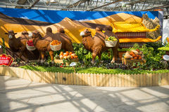 亚洲中国,北京,农业狂欢节,室内展览室,场面,骆驼, 库存图片