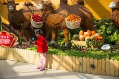 亚洲中国,北京,农业狂欢节,室内展览室,场面,骆驼 免版税库存照片