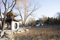 亚洲人中国、北京、陶然亭公园、冬天风景、亭子、大阳台和开放大厅 免版税库存图片