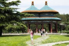 亚洲人中国,北京,天坛,两轮并排的Wanshou亭子 免版税图库摄影