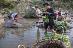 亚洲人清洗莴苣,站立没膝在乡下河, G 库存照片