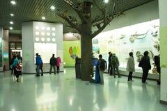亚洲人自然历史中国,北京,北京博物馆  库存照片