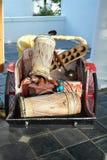 亚洲传统乐器 库存照片