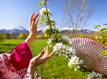 亚洲妇女手和开花树 库存照片