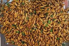 亚洲异乎寻常的食物 免版税库存图片