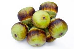 亚洲扇叶树头榈棕榈,棕榈汁,桄榔。 免版税库存图片