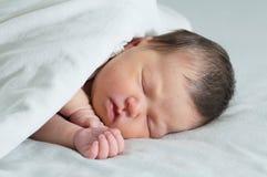 亚洲新出生睡觉在白色毯子,亚洲婴孩画象下 免版税库存照片