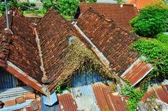 亚洲样式房子 免版税库存图片