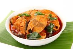 亚洲样式金枪鱼咖喱 服务在白色碗 图库摄影