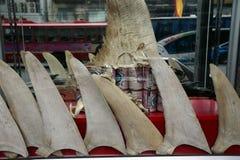 亚洲泰国曼谷中国镇鲨鱼飞翅 免版税库存照片