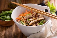 亚洲烹调鸡丁沙拉 免版税库存照片