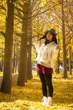 亚洲秋天愉快的女孩4 库存照片