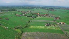 亚洲米领域和村庄空中英尺长度  股票视频