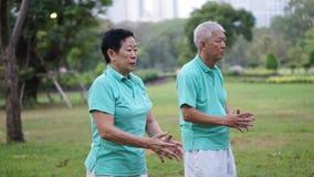 亚洲资深年长夫妇实践Taichi,启功锻炼ou 免版税库存图片