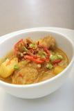 亚洲鸡咖喱食物 免版税图库摄影