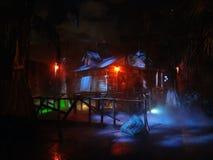 死亡嗥叫O尖叫的水多沼泽的支流在Busch庭院 免版税库存图片