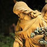 死亡天使在黑暗的背景的 免版税库存图片