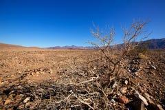 死亡谷国家公园加利福尼亚拔塞螺旋峰顶 免版税库存图片