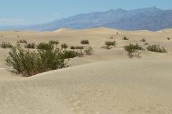 死亡谷国家公园 免版税库存照片