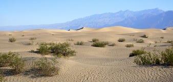 死亡谷沙漠 免版税图库摄影