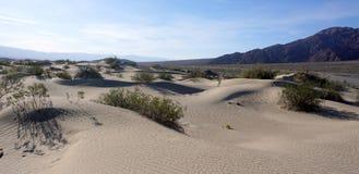 死亡谷沙漠 免版税库存图片