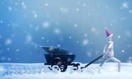 交付一棵圣诞树 库存照片