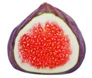 交叉图果子部分结构树 库存图片