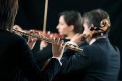 交响乐团表现:长笛演奏家特写镜头 免版税图库摄影