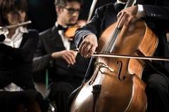 交响乐团:大提琴球员特写镜头 库存图片