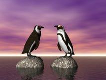 交谈企鹅 库存照片