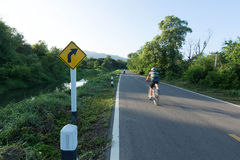 交通标志向右转 免版税库存照片