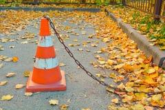 交通锥体,在具体沥青的干燥下落的秋叶 库存图片