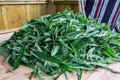 亦称开花的突围叶子-做的传统俄国Koporsky茶伊冯茶原料 免版税库存图片