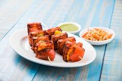 亦称烤酸奶干酪或Paneer蒂卡Kebab或辣椒paneer或者辣椒paneer或tandoori paneer在印度印度,酒吧 免版税库存图片